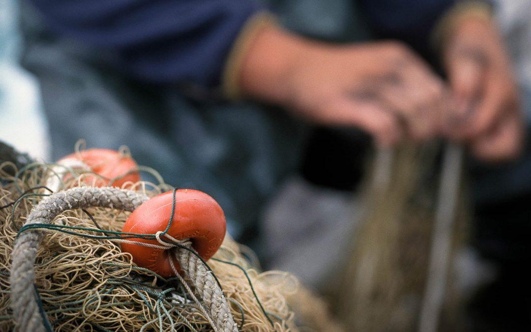 Corporativa/ Industria / Pesca